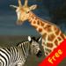Click! Safari Free